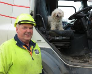 Logging truck driver Barry Scott, partner of Pam Bennett, says their 12-year-old Shih Tzu-Maltese...