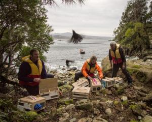 Fiordland Conservation Trust members Murray Willans (left) and Heather Barnes, with Ron Bull,...