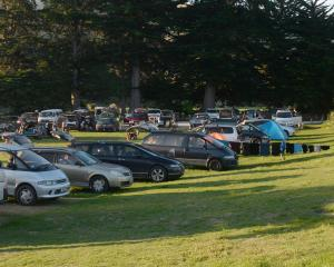 Dozens of freedom campers' vehicles at Warrington domain last night. Photo: Linda Robertson