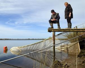Colin and Christine Melvin at their whitebaiting stand near the Clutha River mouth yesterday....