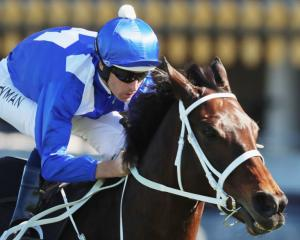 Champion mare Winx signalled she was on track for her return to the races with an eye-catching...
