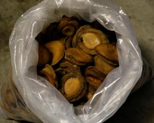 A bag of dried abalone confiscated from suspected poachers is seen in Cape Town. Photo: Reuters.