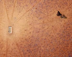 A lone tree stands near a water trough in a drought-effected paddock on the outskirts of Walgett,...