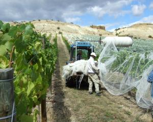 There is a shortage of skilled tractor drivers and irrigation technicians in the Central Otago...