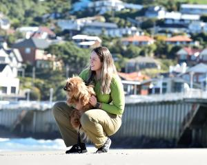 Department of Conservation ranger Jess Triscott keeps close tabs on Ralph the dog at St Clair...