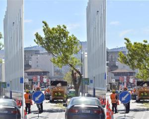 Workers fell a tree in Cumberland St as work on the final section of the one-way cycle network...