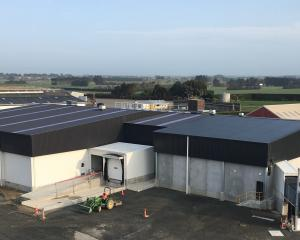 The new Alliance deer processing plant. Photo: Supplied