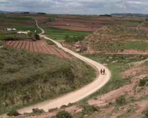 Walkers make their way along the Camino de Santiago. PHOTO: ALLIED PRESS FILES