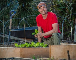 Ben Elms with raised beds in his garden enriched with compost. Photo: Si Williams