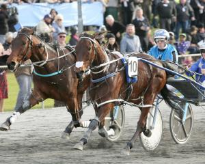 Otago horse of the year Eamon Maguire and Natalie Rasmussen (right) beat Star Galleria and Zac...