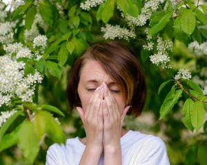 Food and other allergies are more commonplace in society today, but what has gone so wrong with...