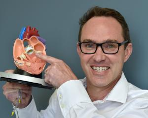 Interventional cardiologist Krys Milburn holds a model showing how a new technique of aortic...