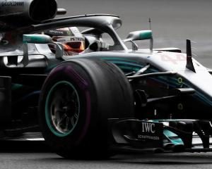 Lewis Hamilton in action during the Mexican Grand Prix. Photo: Reuters