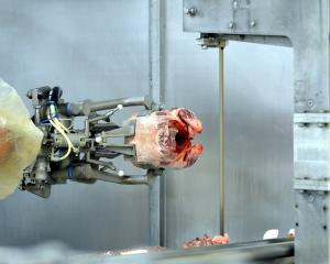 Robotic technology at work in the meatworks, developed in conjunction with Scott Technology and...