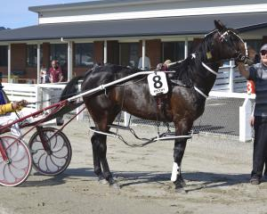 Owner Pat Kubala holds Pat's Delight, driven by Ricky May, after the horse won the Tuapeka Cup at...