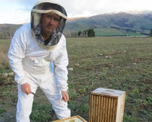 Apiculture New Zealand board member and commercial apiarist Russell Marsh, of Ettrick, said the...