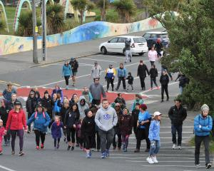 Walkers stride up John Wilson Ocean Dr for a Wellness Walk-Fun Run on Saturday morning,  part of ...