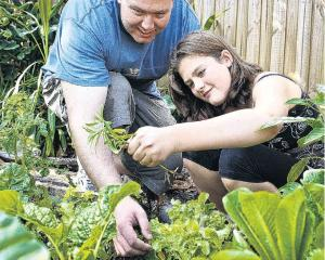 Dig it . . . YouthGrow is a Family Works programme that teaches people between 16 and 25 new...