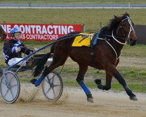 Alderbeck and Brad Williamson face strong competition in race 8 at Invercargill today. Photo:...