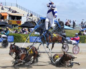 Leeston horseman Terry Chmiel is thrown into the air  in a spectacular crash in race 5 at...