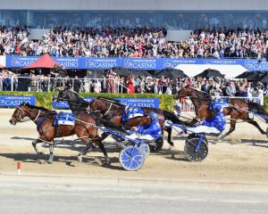 Thefixer, driven by co-trainer Natalie Rasmussen, goes clear to win the $800,000 New Zealand...