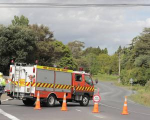 Emergency services attend a crash in Henderson Valley Road. Photo: NZME
