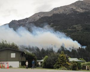 Pine trees ablaze on the slopes of Mt Maude, by the Lake Hawea township. PHOTO: MARK PRICE