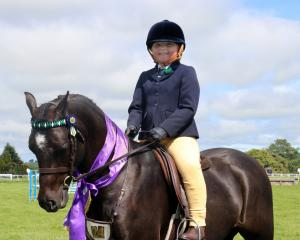 Ruby Cameron  rides champion Welsh pony Ka Arohaina Heartthrob at the 2018 West Otago A & P...