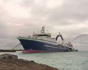 Sandford's then new deepwater vessel  San Granit, entering Nelson harbour for the first time in...