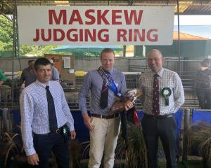 Thrilled with his junior sheep judging win at the New Zealand Agricultural Show last week, is...