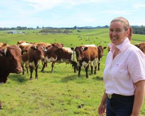 Bridget Lowry gets out on her Balclutha farm with some of her Pinzgauer cattle. She says she...