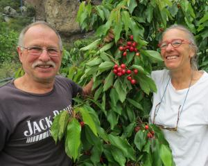 Luke and Shona Denton, of Frogrock Orchard, in the Teviot Valley, were among the first of the...