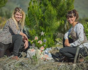 Mathilde Fonteneau and Abi Hurford-Abel with some home-made Christmas decorations made from...