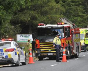 Emergency services at the crash scene today. Photo: Christine O'Connor