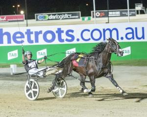 Driver Todd Final in Victoria with New Zealand-bred McCarthy holds the whip aloft after  winning...