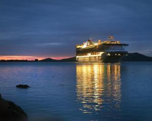 Golden Princess slips into Otago Harbour during an earlier visit to Dunedin. Photo: ODT