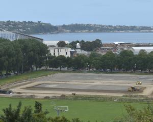 A deal between the Dunedin City Council and Football South will result in more football action on...