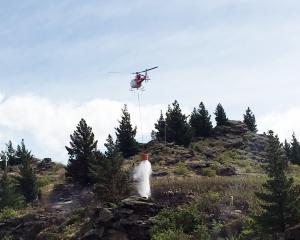 A helicopter douses a fire at Black Ridge Vineyard and Winery near Alexandra yesterday. PHOTO:...