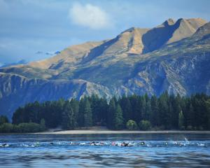 Swimmers who took part in last year's TriFactor Wanaka triathlon will be hoping for similar...