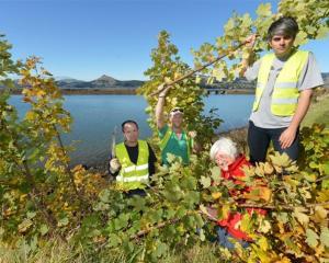 West Harbour activists (from left) Steve Walker, Matt Thomson, Marian Hobbs and Aaron Hawkins...
