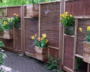 Boxes of plants on a fence is the simplest way to go. Photos: Gillian Vine