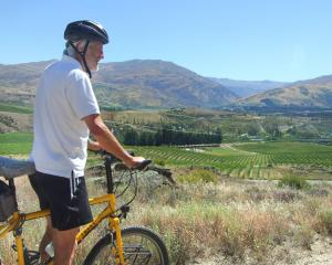 Push Bike Trail boss Tim Hawkins, of Bannockburn, takes in the Central Otago landscape before the...