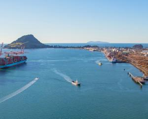 Total cargo volumes are up at Port of Tauranga, pictured, with a ninth crane ordered and 385m...