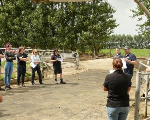 Otautau farmer Nick Thomsett discusses how cow monitoring has helped him improve the management...