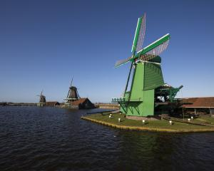 A green mill makes a striking display in Zaanse Schans. Photo: Cris Toala Olivares