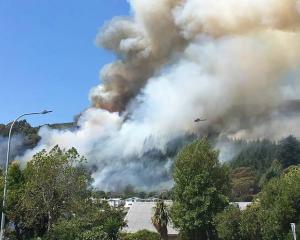Bush fires on the outskirts of Nelson. Photo / Facebook via NZ Herald