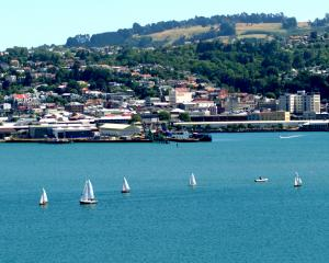 Great weather for sailing in Sunny Dunedin.