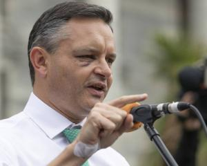 James Shaw speaks to the crowd at the climate change protest at Parliament in Wellington on...