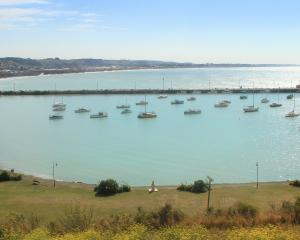 The Waitaki District Council's harbour area committee is seeking a commercial stakeholder...