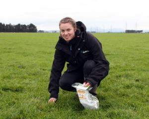 Selina Copland works in a key accounts role for Ballance Agri-Nutrients. PHOTO: OLIVIA ROSS